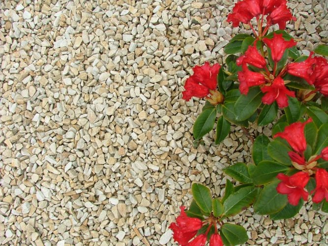 10mm Donegal Quartzite Chippings
