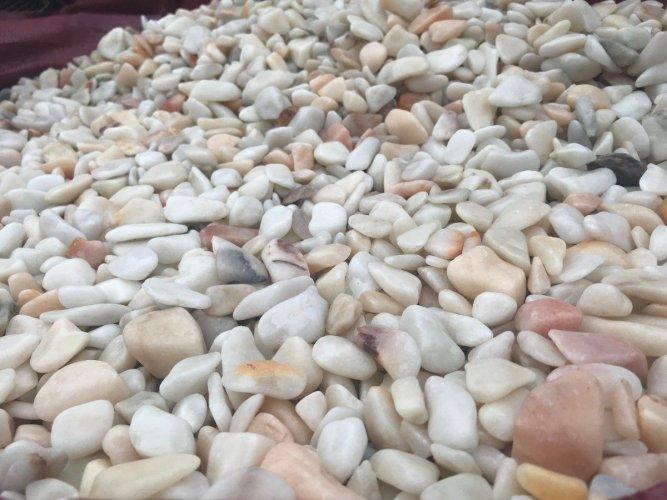 Flamingo Stone Chipping
