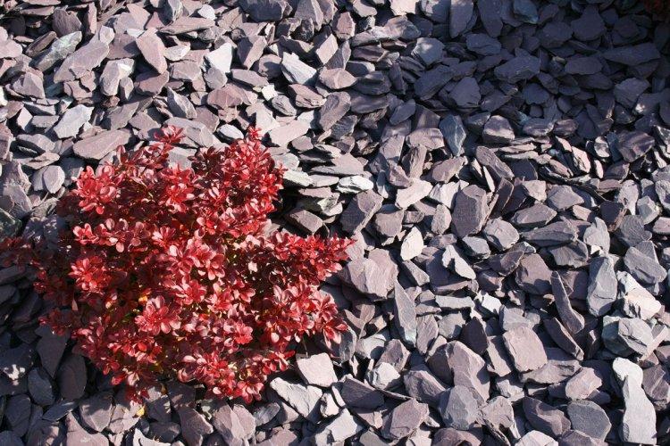 Plum Slate Mulch Stone Chipping