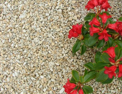 Gold Donegal Quartzite Stone Chippings